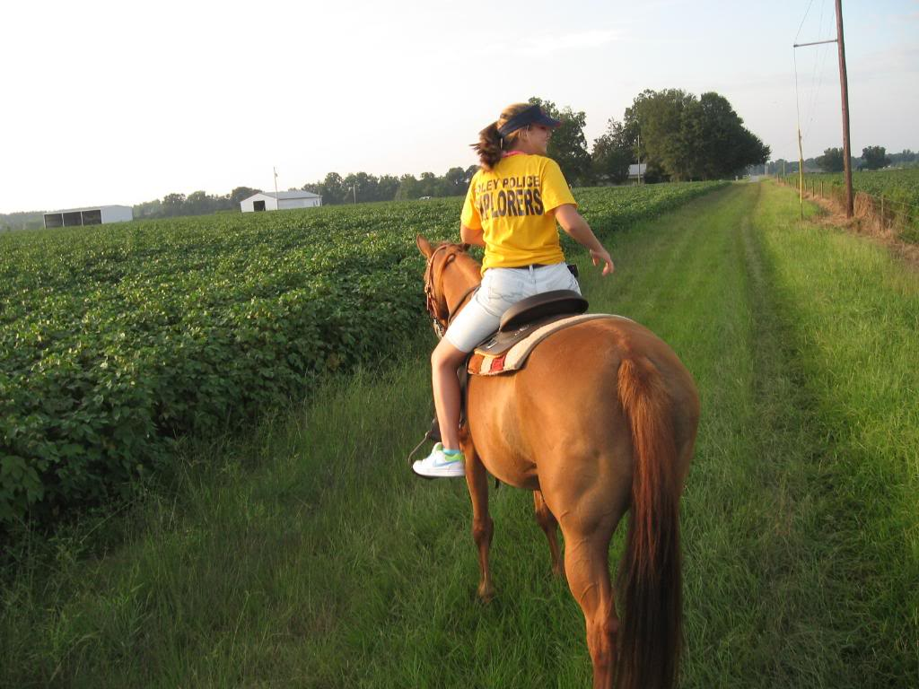Selling one of my mares-New pics added! Trailridingathome017