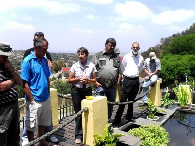 Gauteng Chapter Koi Safari - October SDC10414