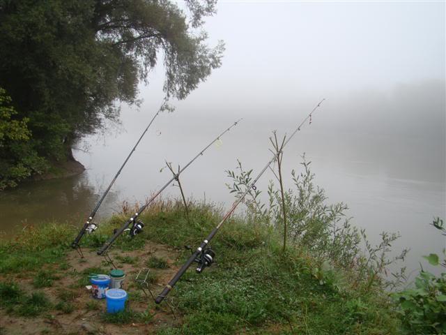 9 dana na Dravi , veslanje - NAVIGATOR DSC00158Small