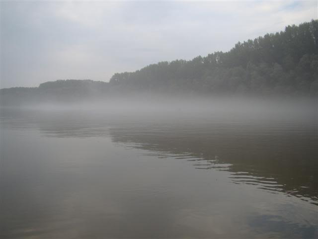 9 dana na Dravi , veslanje - NAVIGATOR DSC00195Small