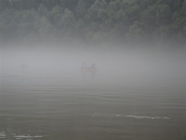 9 dana na Dravi , veslanje - NAVIGATOR DSC00196Small