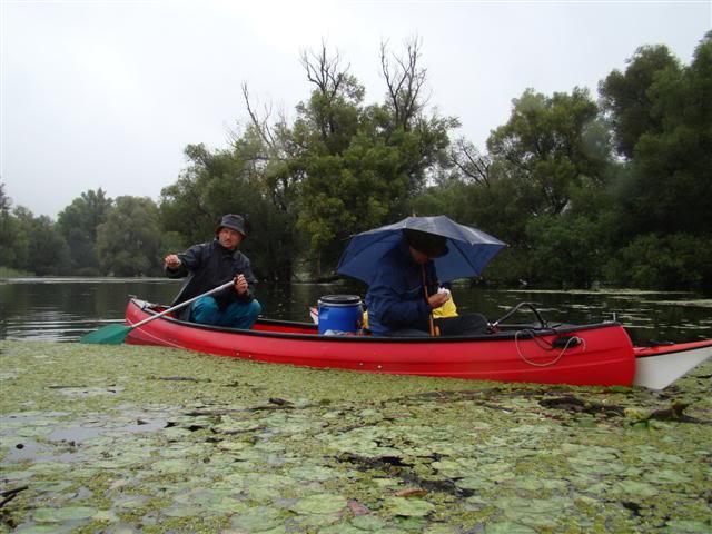 9 dana na Dravi , veslanje - NAVIGATOR DSC00234Small