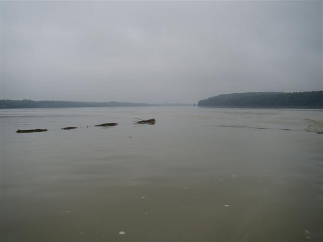 9 dana na Dravi , veslanje - NAVIGATOR DSC00395Small