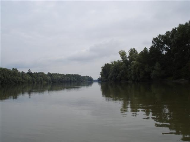 9 dana na Dravi , veslanje - NAVIGATOR DSC01860Small