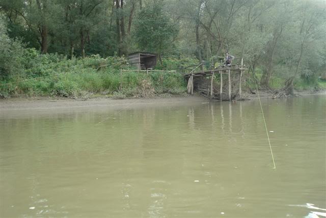 9 dana na Dravi , veslanje - NAVIGATOR DSC07979Small