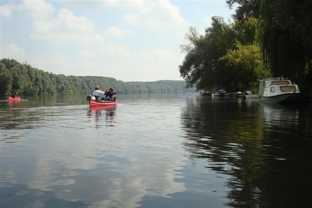 9 dana na Dravi , veslanje - NAVIGATOR DSC08088Small