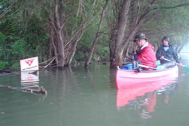 9 dana na Dravi , veslanje - NAVIGATOR DSC08120Small