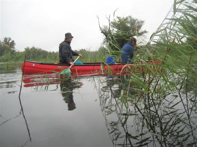 9 dana na Dravi , veslanje - NAVIGATOR IMG_1309Small