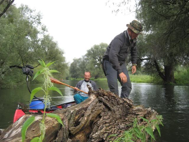 9 dana na Dravi , veslanje - NAVIGATOR IMG_1381Small