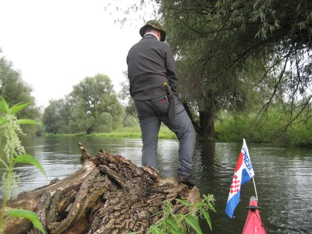 9 dana na Dravi , veslanje - NAVIGATOR IMG_1382Small