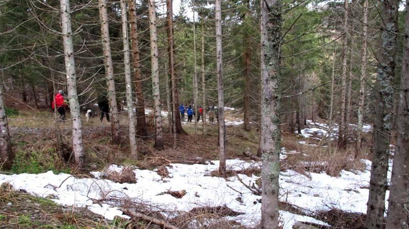 ZIMSKO DRUŽENJE - JANJČARICA 16-18.01.2015  - Page 3 IMG_4895Medium_zpsd8b34905