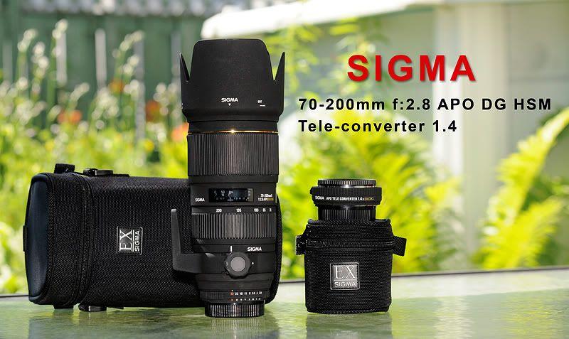 Zoom Sigma 70-200 f2.8 pour Nikon (VENDU) PubSigma800-1