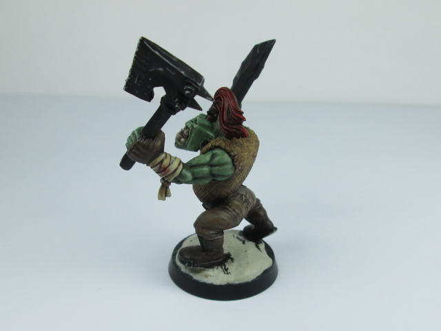 My Orc Warband IMG_0560_zps45616ffd