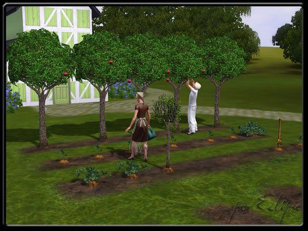 Nectaria Campos por eclipse - Capítulo 2 Nectariacampos0021