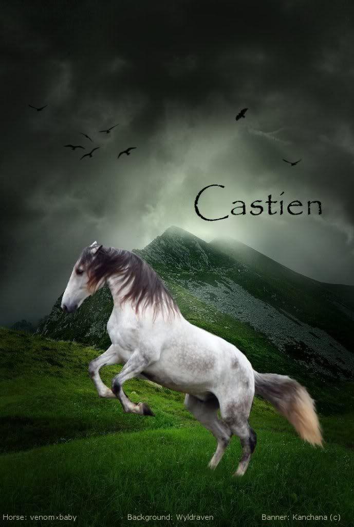 Re: Portfolio (Comments Welcome! XD)  Castien