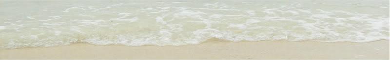 Timeless Sands