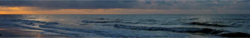 Woodrow Cove: