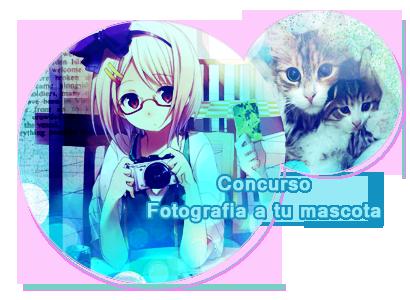 concurso:Fotografia a tu Mascota!! Iconconcursomascotas