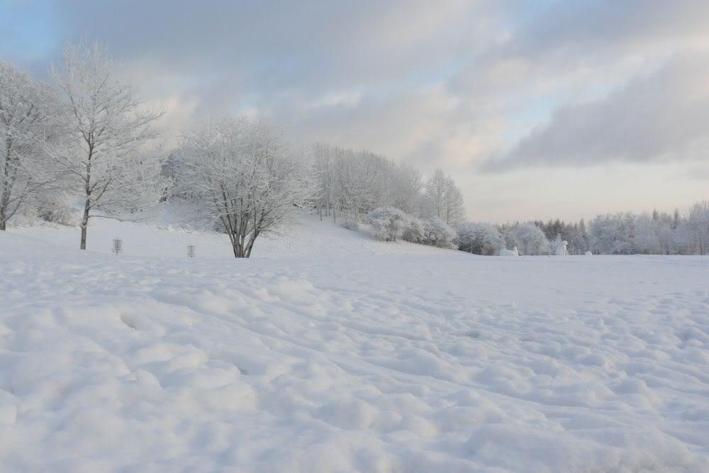 vacanza d'inverno...foto&foto...aggiungete le vostre! P1040213