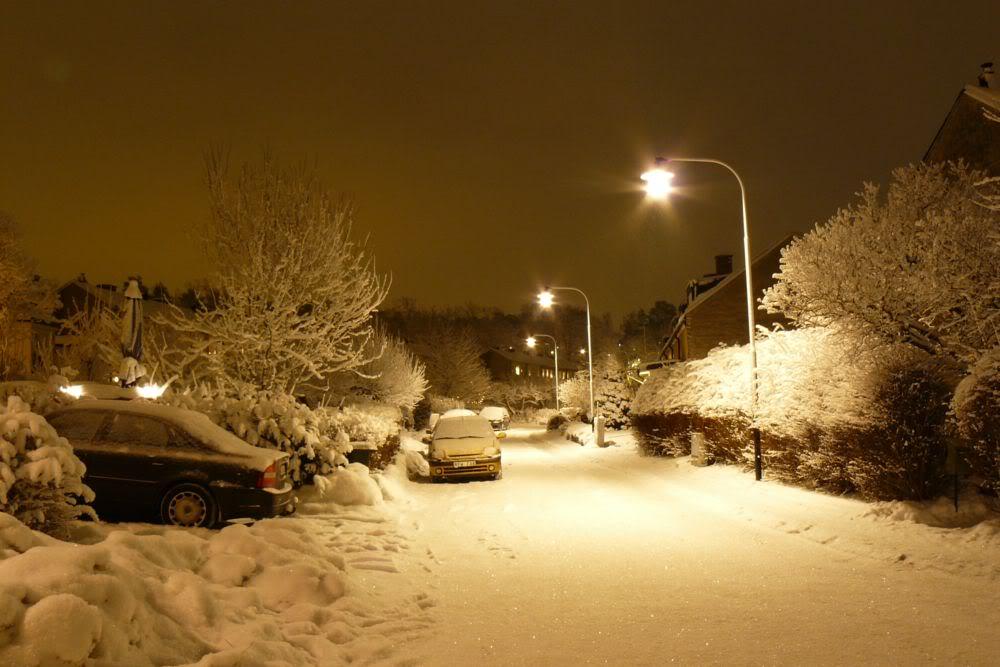 vacanza d'inverno...foto&foto...aggiungete le vostre! P1040249