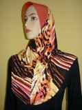 Tudung ala ariani...cun2..tip top..latest design..ekslusif.. Th_TSC91600x1200