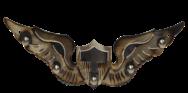 Flight Wings AVWINGS1