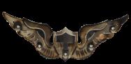 Flight Wings AVWINGS2