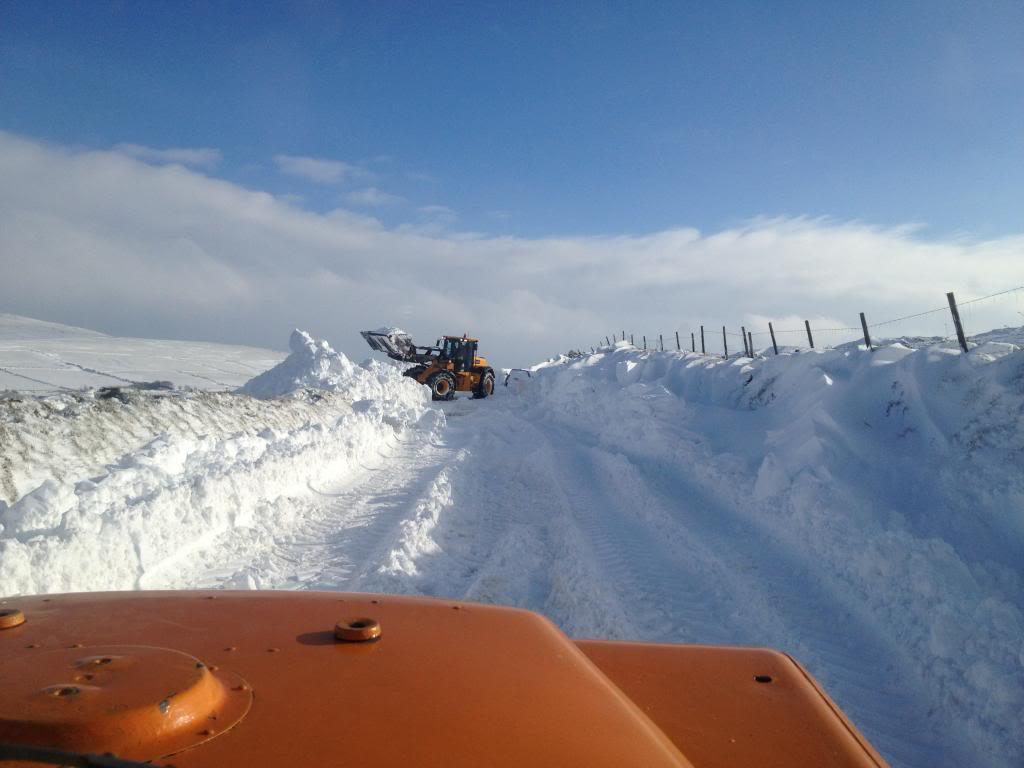 Deep snow IMG_4721_zpsedf2bbef