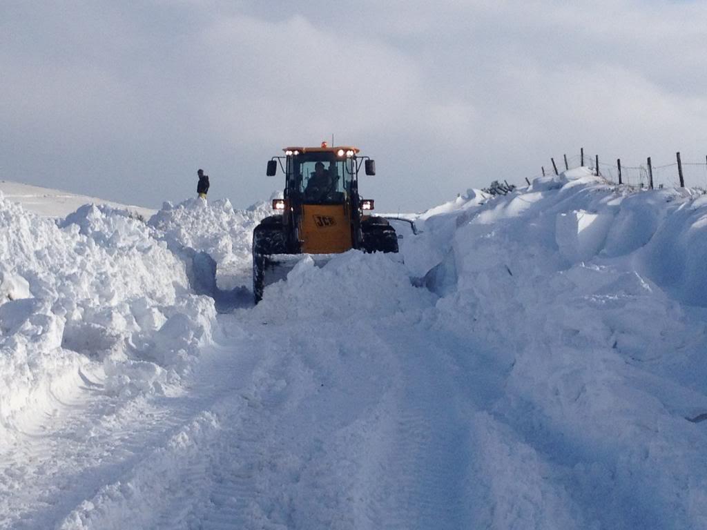Deep snow IMG_4723_zpse13fb336