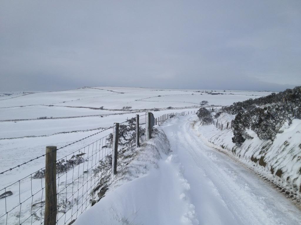 Deep snow IMG_4739_zps223e46df