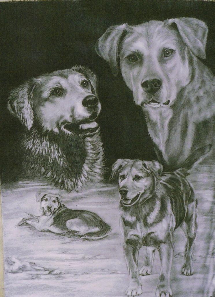 Keays' artwork - Page 2 Shepardx4_zpsfmhwhnfo