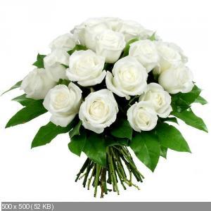 Поздравляем с Днем Рождения Татьяну (Варина бабушка) 5249b2441cf7cc344fa28dea8f8636b2
