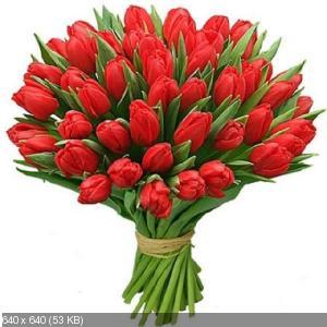 Поздравляем с Днем Рождения Ларису (Lorchen) 0842efc6a3488b705c7f03da2b2857dc