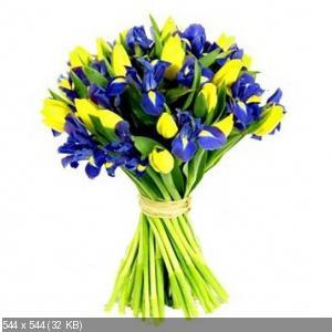 Поздравляем с Днем Рождения Елену (skarabeya) 3f57ce0f3cf30753bec97cd367300c89