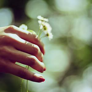 Sreca  Bouquet_by_GabriDreams-1