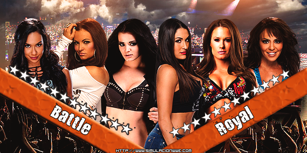 S-WWE Royal Rumble 2014 [26-01-2014]   Womes-Battle-Royal_zpsd2d84dbb
