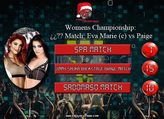 S-WWE Cyber Christmas 2013 [29/12/2013] Womens-Title_zps0bc280b0