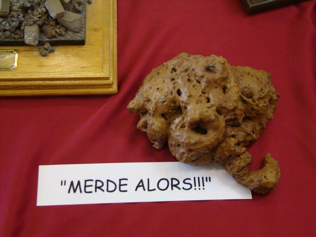 Mons expo 2012 DSC09179