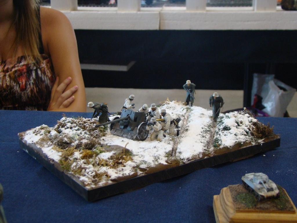 Mons expo 2012 DSC09203