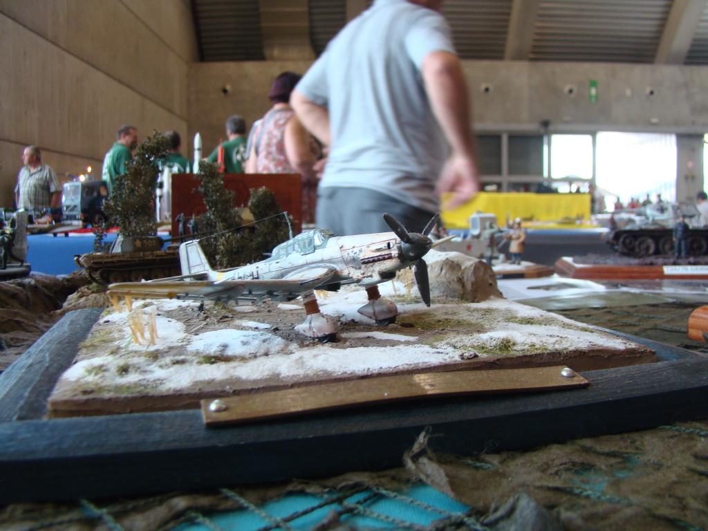 Mons expo 2012 DSC09210