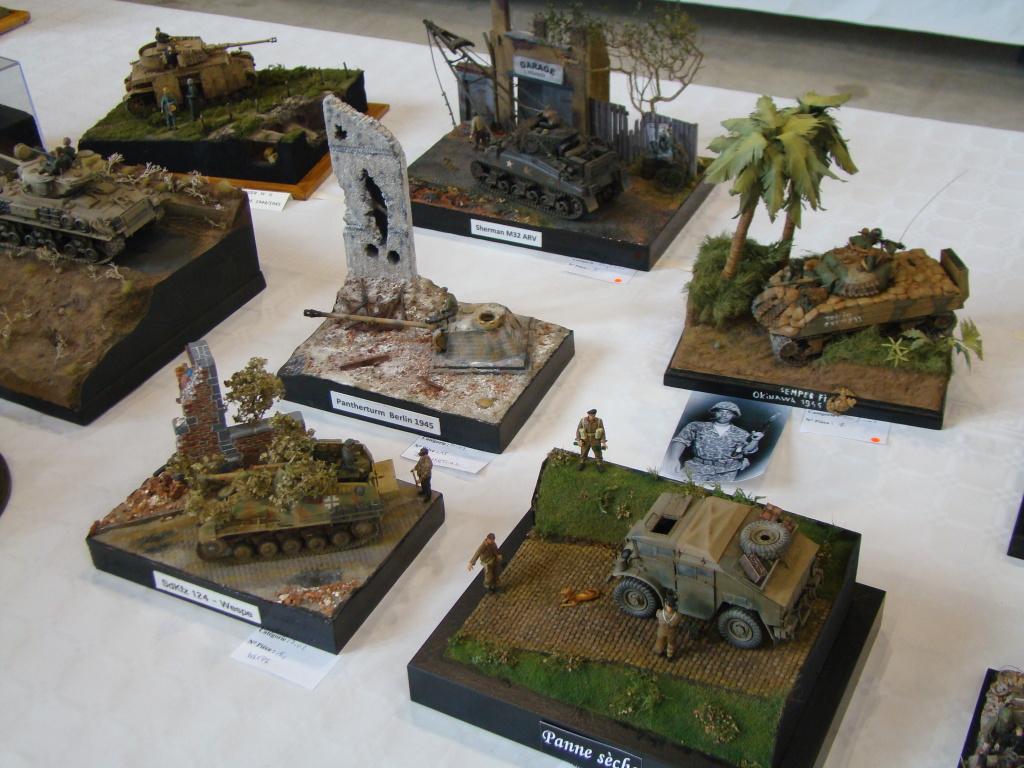 Mons expo 2012 DSC09249