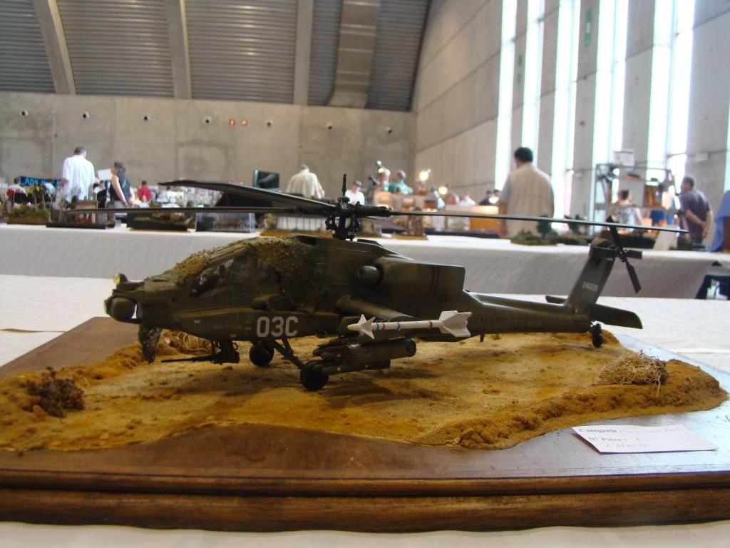 Mons expo 2012 DSC09257