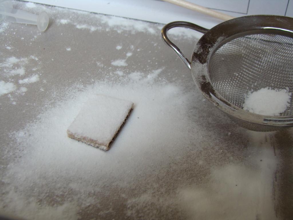 Faire une couche de neige. DSC09332