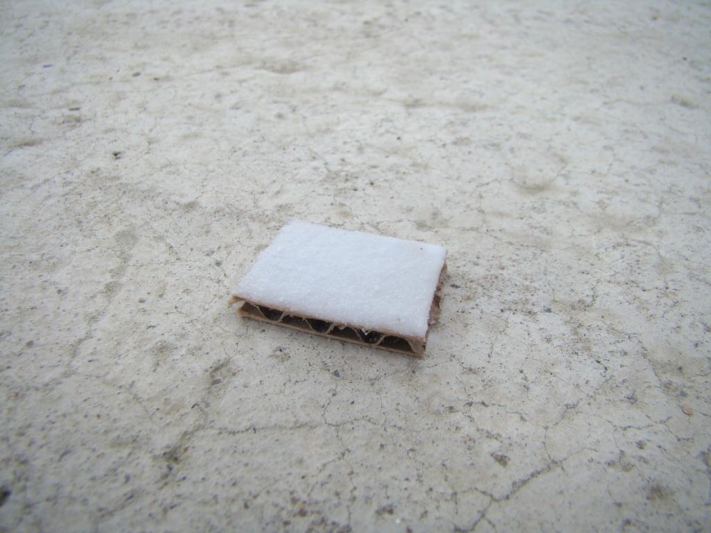 Faire une couche de neige. DSC09335
