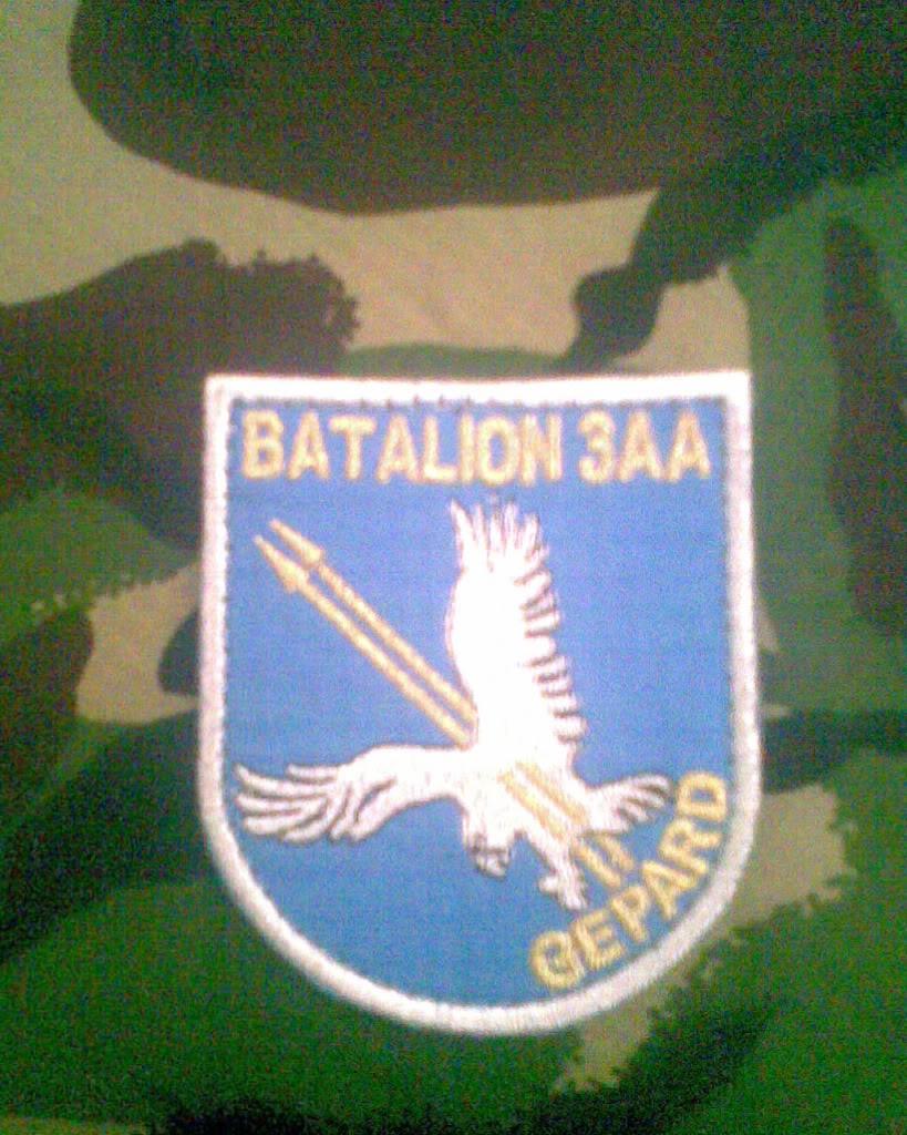 Embleme de aviatie - Pagina 2 Imag000