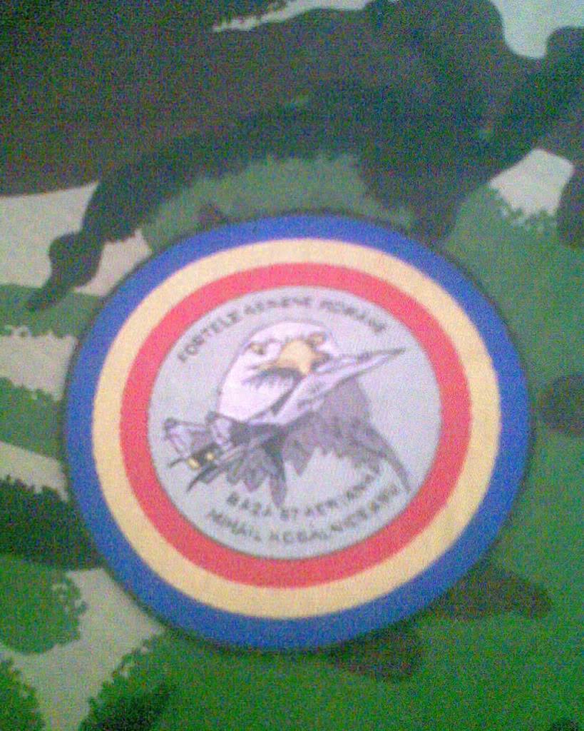 Embleme de aviatie - Pagina 2 Imag004