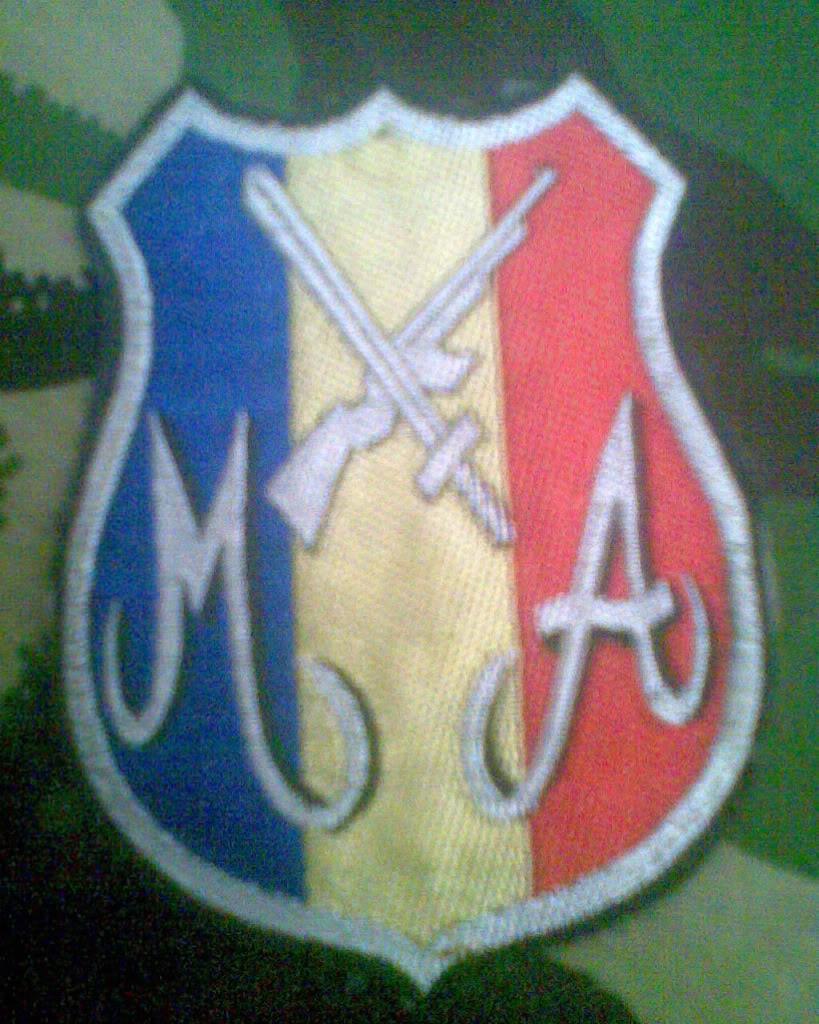 Embleme de aviatie - Pagina 2 Imag007