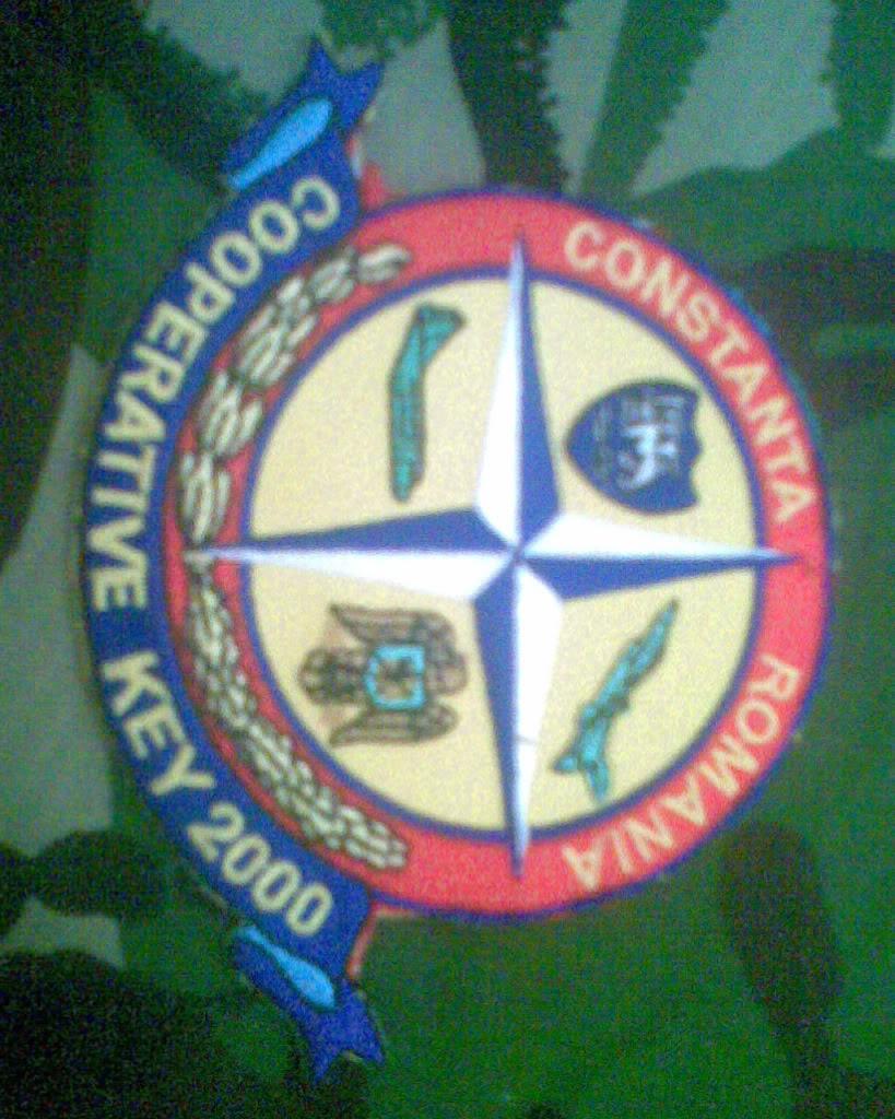Embleme de aviatie - Pagina 2 Imag008