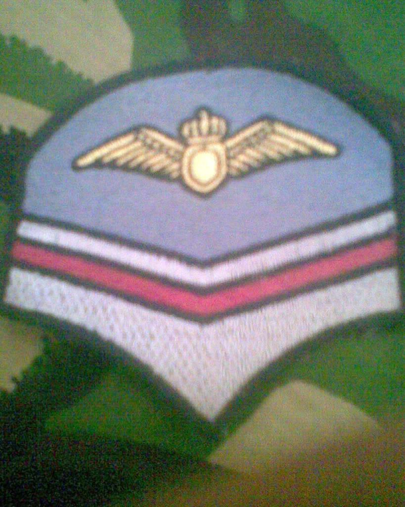 Embleme de aviatie - Pagina 2 Imag011