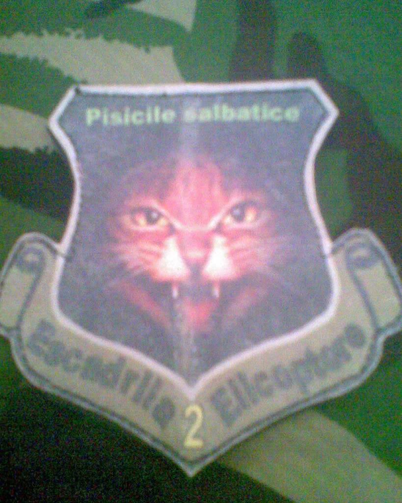 Embleme de aviatie - Pagina 2 Imag017
